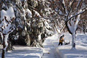snow-removal-management-ottawa
